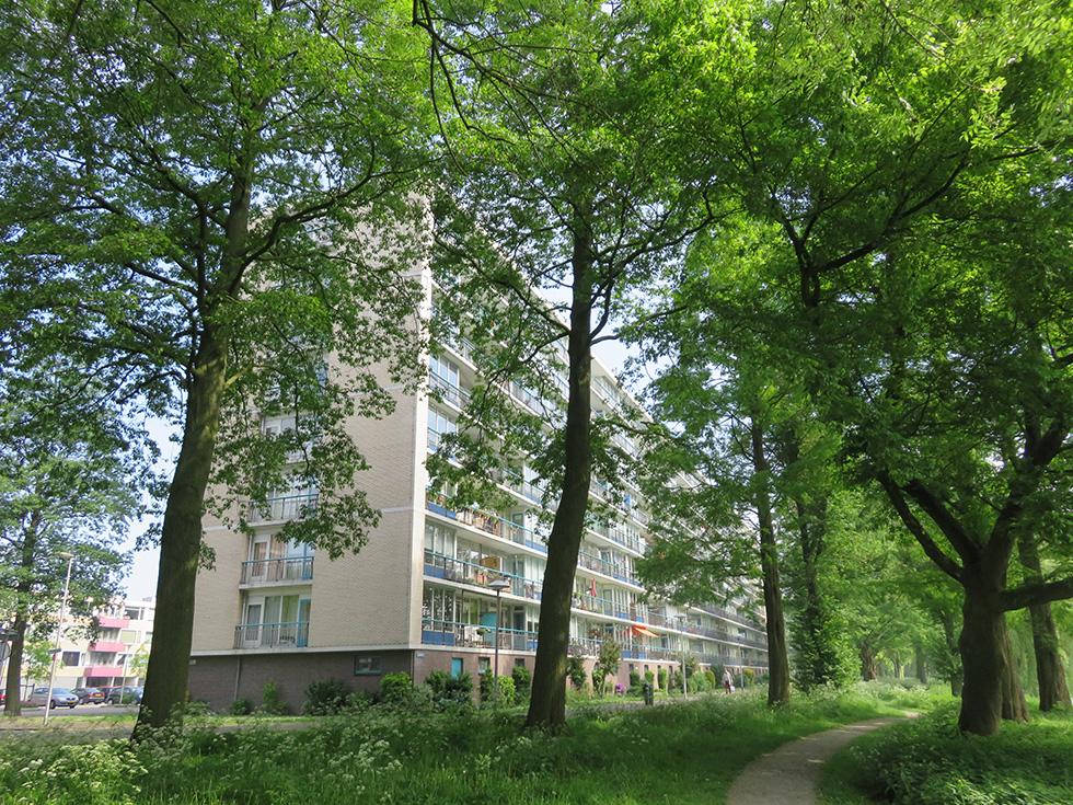 Rhodosdreef 36, 3562 TE Utrecht